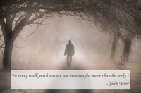 John Muir Nature Quotation