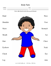 Bodypartsmatchingpage on letter sounds worksheets preschool