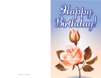 Pink Roses Birthday Card