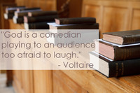 Voltaire Comedian Quotation