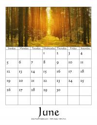 June 2016 Photo Calendar