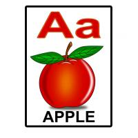 A is for Apple Flash Card