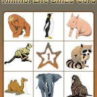 Animal Life Bingo Card 1