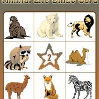 Animal Life Bingo Card 2