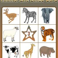 Animal Life Bingo Card 3