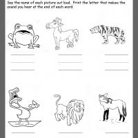 Animals Ending Consonants Review
