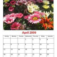 Printable April 2009 Colorful Daisies Calendar - Printable Monthly Calendars - Free Printable Calendars