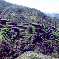 Printable Banaue Rice Terraces - Printable Pics - Free Printable Pictures