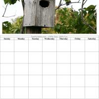 Bird House Blank Calendar