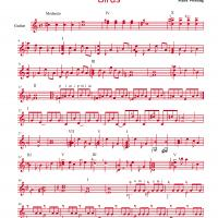 Birds By Mark Wesling Guitar Music Sheet