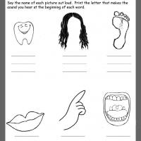 Printable Body Parts Beginning Consonants Review - Printable Kindergarten Worksheets and Lessons - Free Printable Worksheets
