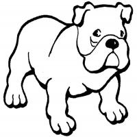 Printable Bulldog - Printable Coloring Sheets - Free Printable Coloring Pages