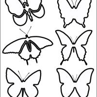 Butterfly Stensils