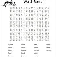 Cats Word Search