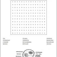 Printable Cells Word Search - Printable Word Search - Free Printable Games