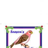 Printable Christmas Robin - Printable Christmas Cards - Free Printable Cards