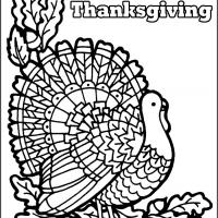 Color the Turkey