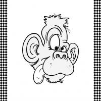 Crazy/Goofy Monkey Flash Card