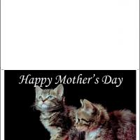 Printable Cute Kitten In A Basket - Printable Mothers Day Cards - Free Printable Cards