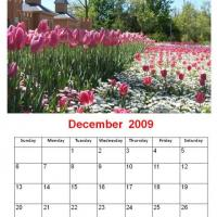 Printable December 2009 Tulips Calendar - Printable Monthly Calendars - Free Printable Calendars