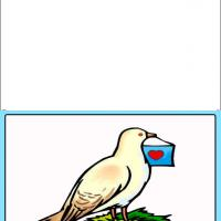 Dove Sending Letter