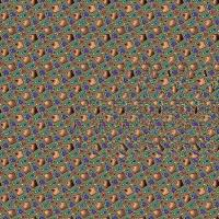 Duck Stereogram