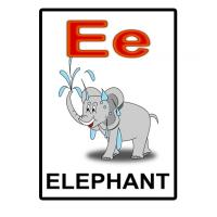Printable E is for Elephant Flash Card - Printable Flash Cards - Free Printable Lessons