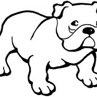 Printable English Bulldog - Printable Coloring Sheets - Free Printable Coloring Pages