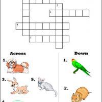 Family Pets Picture Crossword