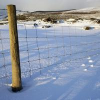 Printable Fence In The Snow - Printable Nature Pictures - Free Printable Pictures