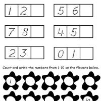 Printable Flower Theme What's Next - Free Printable Math Worksheets - Free Printable Worksheets