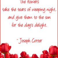 Printable Flowers Take Tears - Printable Motivational Quotes - Free Printable Quotes