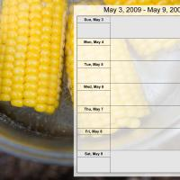 Printable Food Themed Weekly Planner May 3-9 2009 - Printable Weekly Calendar - Free Printable Calendars