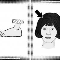 Printable Foot and Hair Flash Cards - Printable Flash Cards - Free Printable Lessons