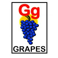 Printable G is for Grapes Flash Card - Printable Flash Cards - Free Printable Lessons