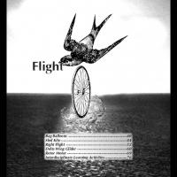 Grades 2-4 Aeronautics Part3 - Flight