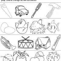 Printable Grouping Items - Printable Preschool Worksheets - Free Printable Worksheets