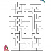 Printable Hummingbird Finding The Flower - Printable Mazes - Free Printable Games