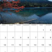 Printable January 2010 Nature Calendar - Printable Monthly Calendars - Free Printable Calendars