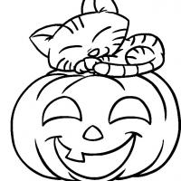 Printable Kitten on a Pumpkin - Printable Coloring Sheets - Free Printable Coloring Pages