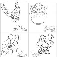 Printable Large or Small Pictures Comparison - Printable Preschool Worksheets - Free Printable Worksheets