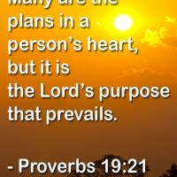 Lords Purpose Prevails Quote