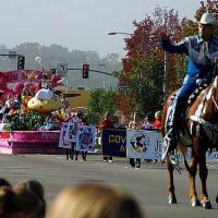 Man Riding A Horse On Parade