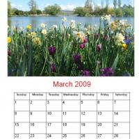 Printable March 2009 Flowers By The Pond Calendar - Printable Monthly Calendars - Free Printable Calendars