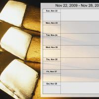Money Theme Weekly Planner Nov 22 to Nov 28 2009