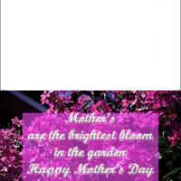 Printable Mother's Bloom - Printable Mothers Day Cards - Free Printable Cards