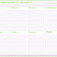 Neon Green Planner