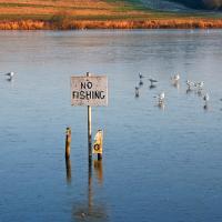 Printable No Fishing In The Frozen Lake - Printable Nature Pictures - Free Printable Pictures