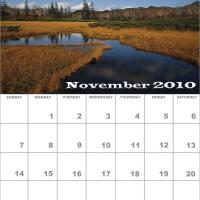 Printable November 2010 Nature Calendar - Printable Monthly Calendars - Free Printable Calendars