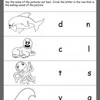 Ocean Theme Ending Consonants Review